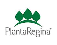 planta-regina